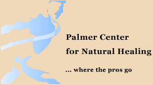 Palmer Center for Natural Healing