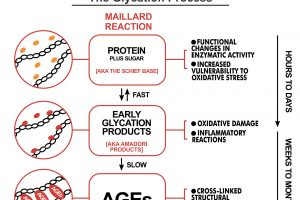 The glycation process